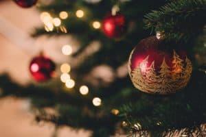FODMAP survivalgids voor de feestdagen: 20 tips